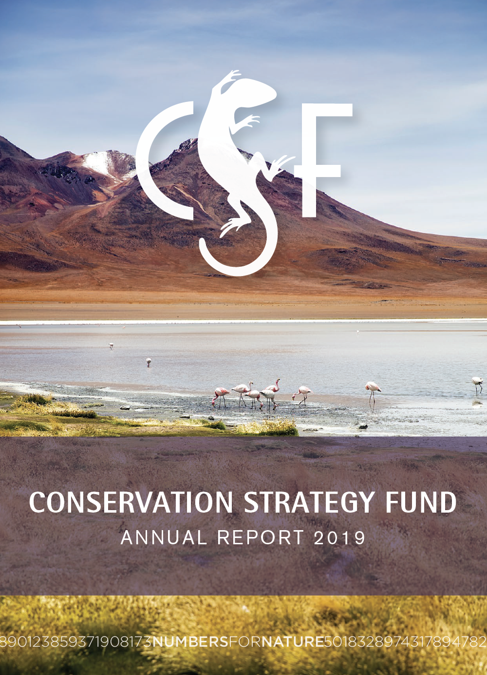 2019 CSF Annual Report