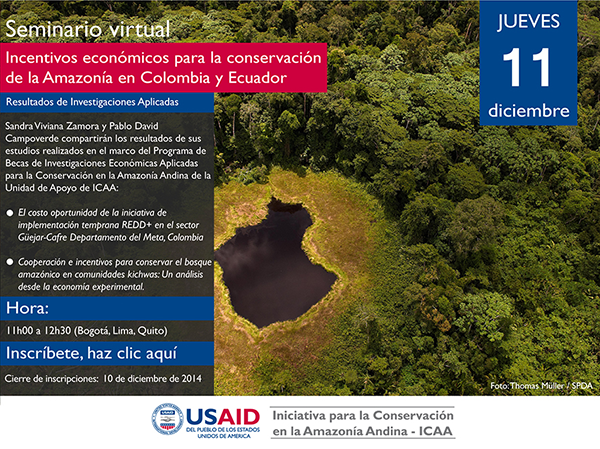 USAID ICAA seminario virtual