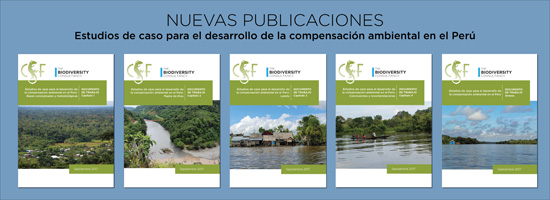 Peru compensation publications