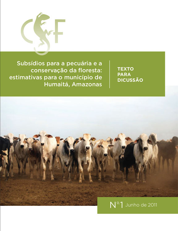 Subsidio Final Report cover