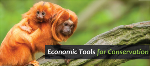 Economic Tools for Conservation course header